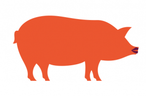 Lipstick on a Pig and Other Issues re: Website Development Prices
